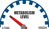 Metabolism chart low to high
