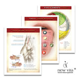 Chinese Medicine Made Simple Book-1-TCM training product-newvitas