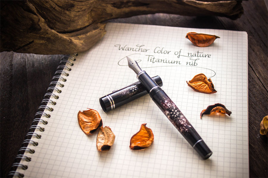 Colors of Nature - Purple Aster - Titanium Nib
