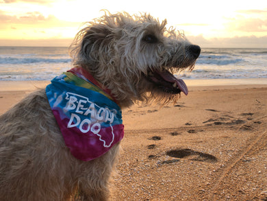 Florida Beach Dog Bandana