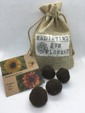 Radiating sunflowers - Radical Roots Seed Bomb Company