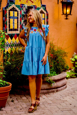 CHAMBRAY PAISLEY DRESS