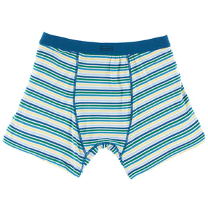 Men's Perth Stripe Boxer Brief