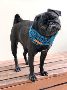 Carlton FC AFL Pooch Snood