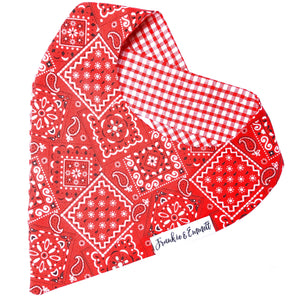Red Paisley Reversible Bandana