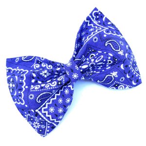 Purple Paisley Bow Tie