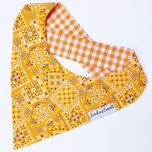 Orange Paisley Reversible Bandana