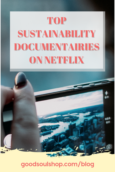 Top Sustainability Documentaries on Netflix