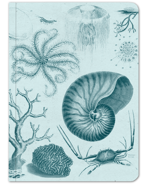 Shallow Sea Softcover Notebook - Lined