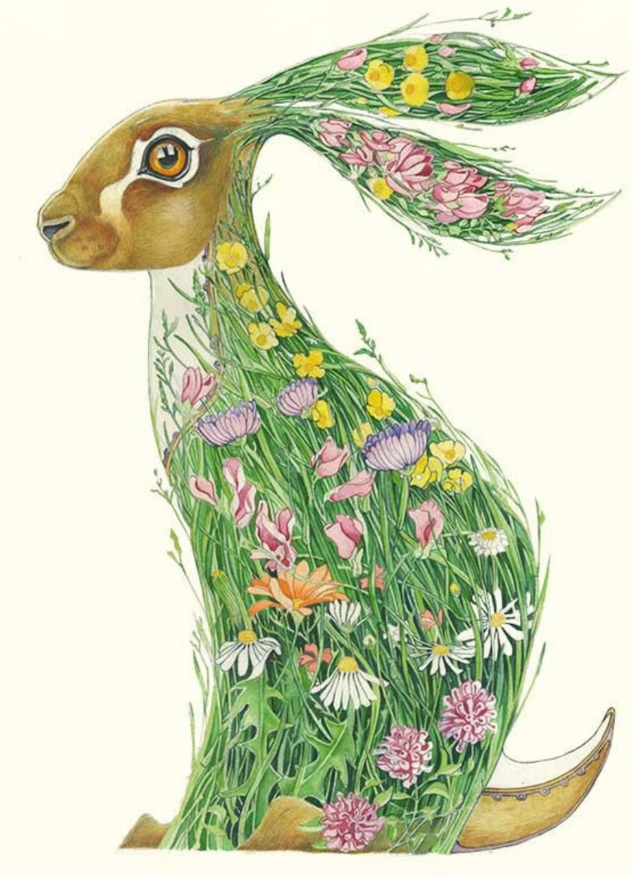 Hare in Meadow Card