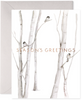 Snowy Birches-S/6