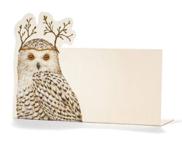 Winter Owl Place-Card - Pack of 12