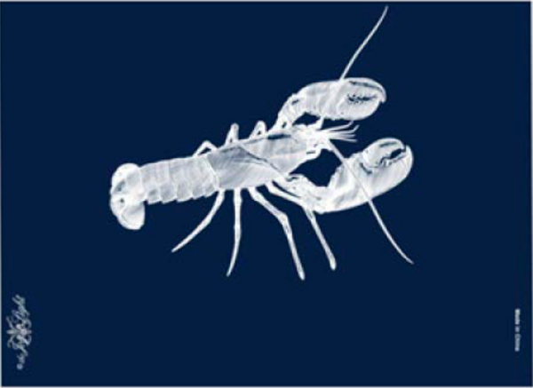 Lobster, White on Blue, Matte, Embossed with Gloss Matchbox 4""
