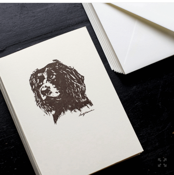 Spaniel Note Cards- S/10