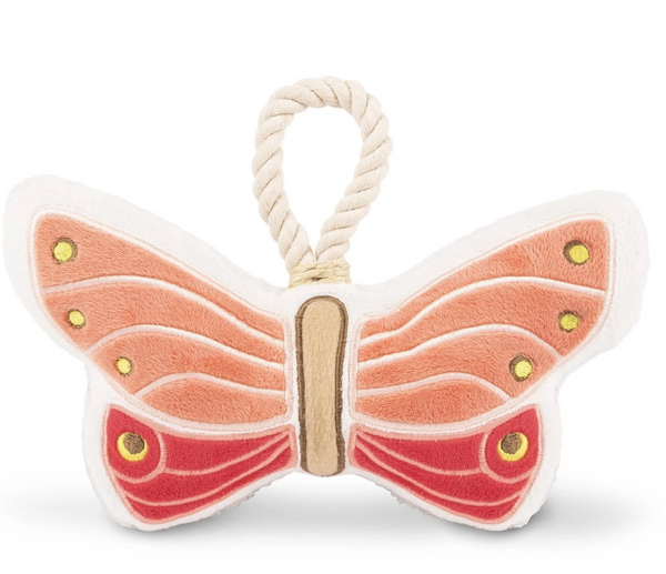 Butterfly Canvas Toy