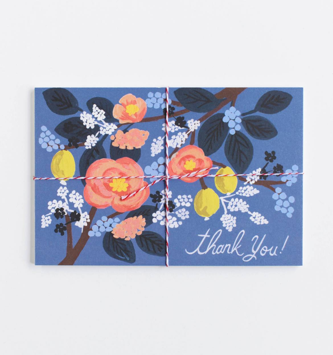 Pack of 10 Cobalt Thank You postcards