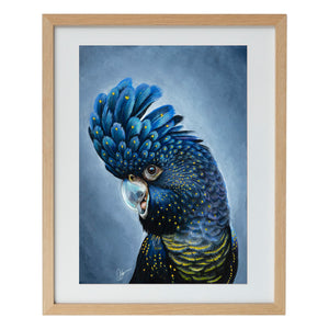 Black Cockatoo - Artist Fine Art Print