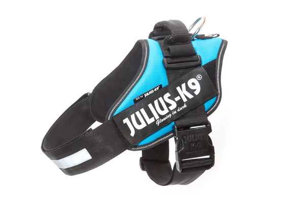 Julius K9 Harness Aquamarine