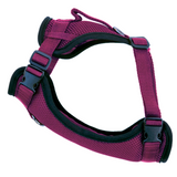 Canada Pooch Everything Harness