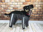 Fou Fou Dogs Body Guard Pants