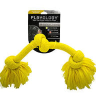 Playology Chicken Scented Toys