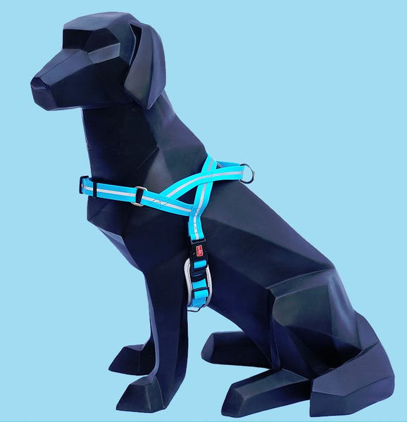 Wigizi Waterproof Harness
