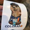 Colorado Otter Sticker