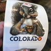 Colorado Squirrel Sticker