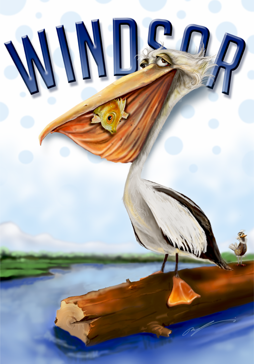 Windsor Pelican