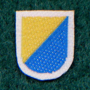 U.S. - Beret Flash (5th SFG)