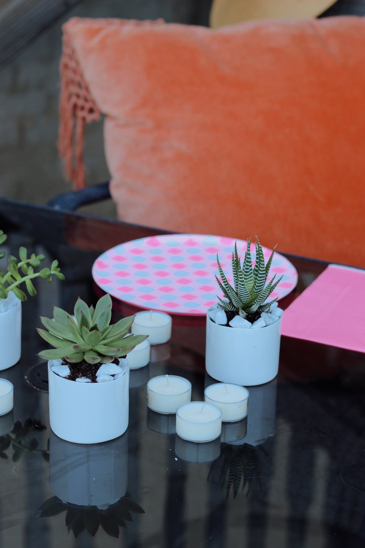 ZuZu's x Presley Paige - Patio Party Bundle | this bundle includes your choice of trio (bud vases or succulents), Murphy's Naturals citronella tea lights, and a disposable plate/napkin combo!