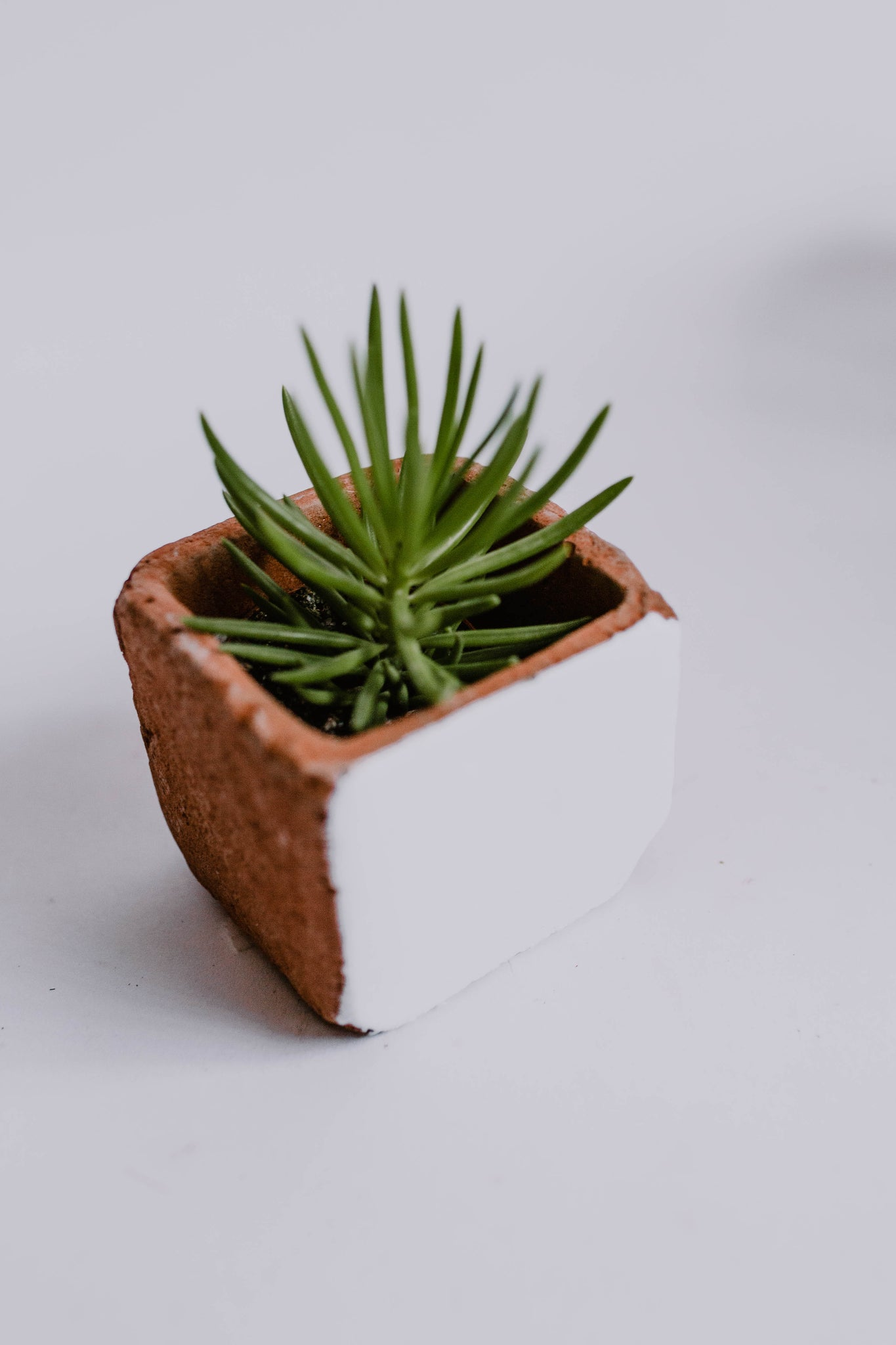 Square Brick Planter