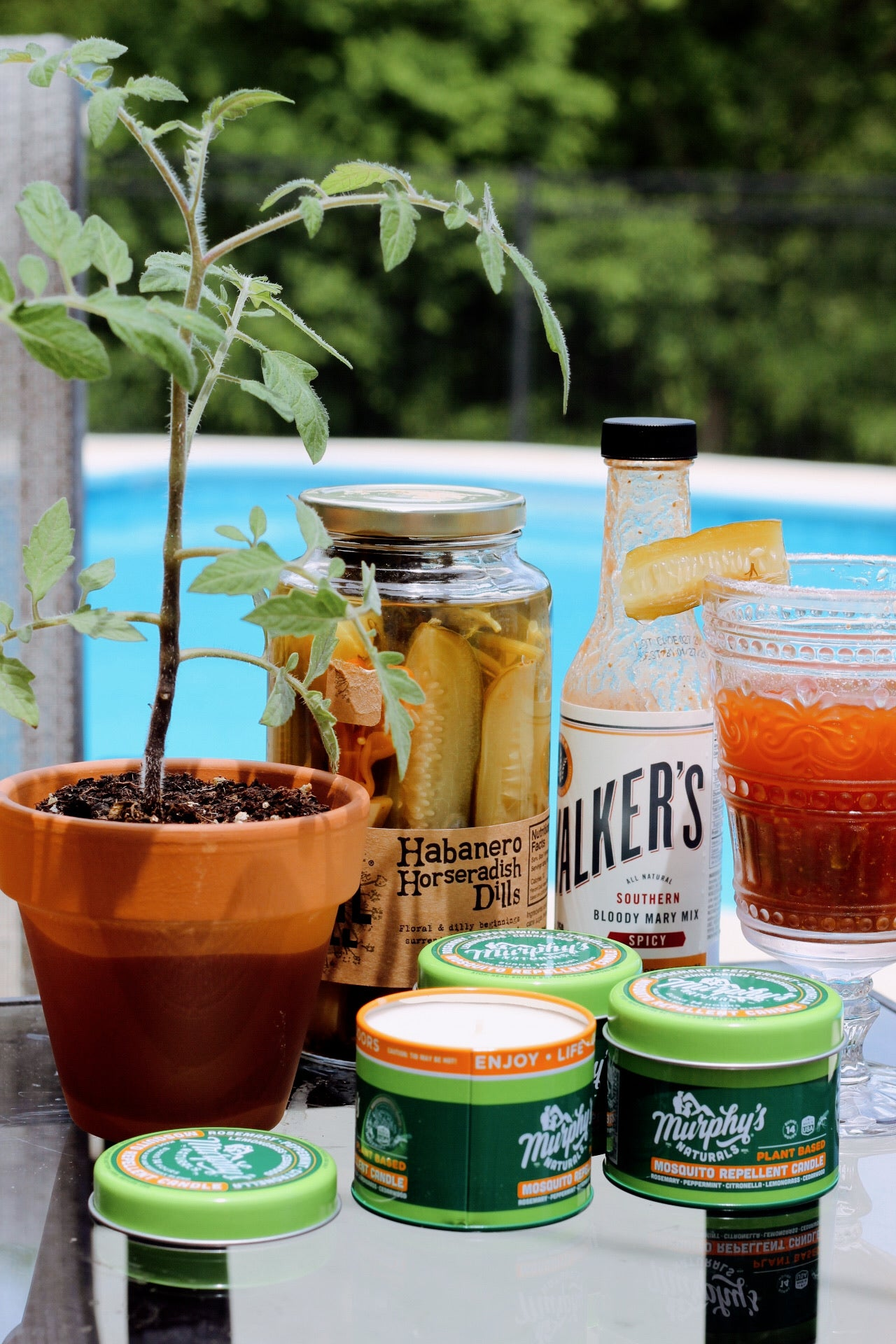 ZuZu's x City Supply Fayetteville - Bloody Mary Bundle | this bundle includes a tomato plant and Murphy's Naturals citronella candle set from ZuZu's Petals, along with Walker's Bloody Mary Mix and Homestyle Spicy Pickles.