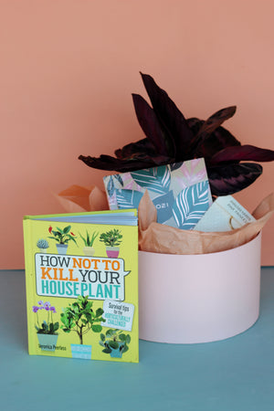 Back to School Collection: HORT 101 Bundle