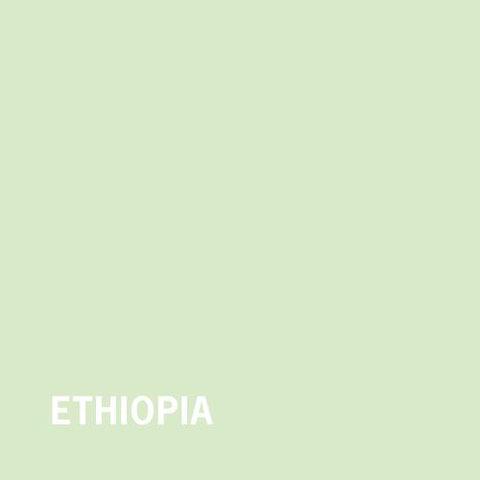 Ethiopia Abysinian Mocca G3 Natural