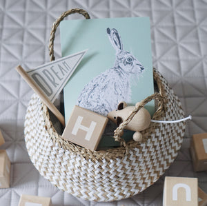 Hare in Sage Green