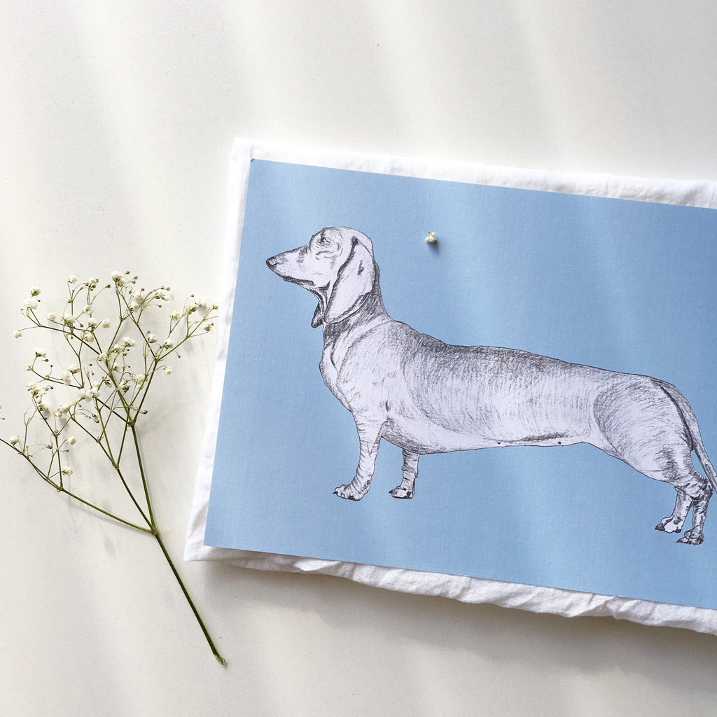 Dachshund art print for baby boy nursery