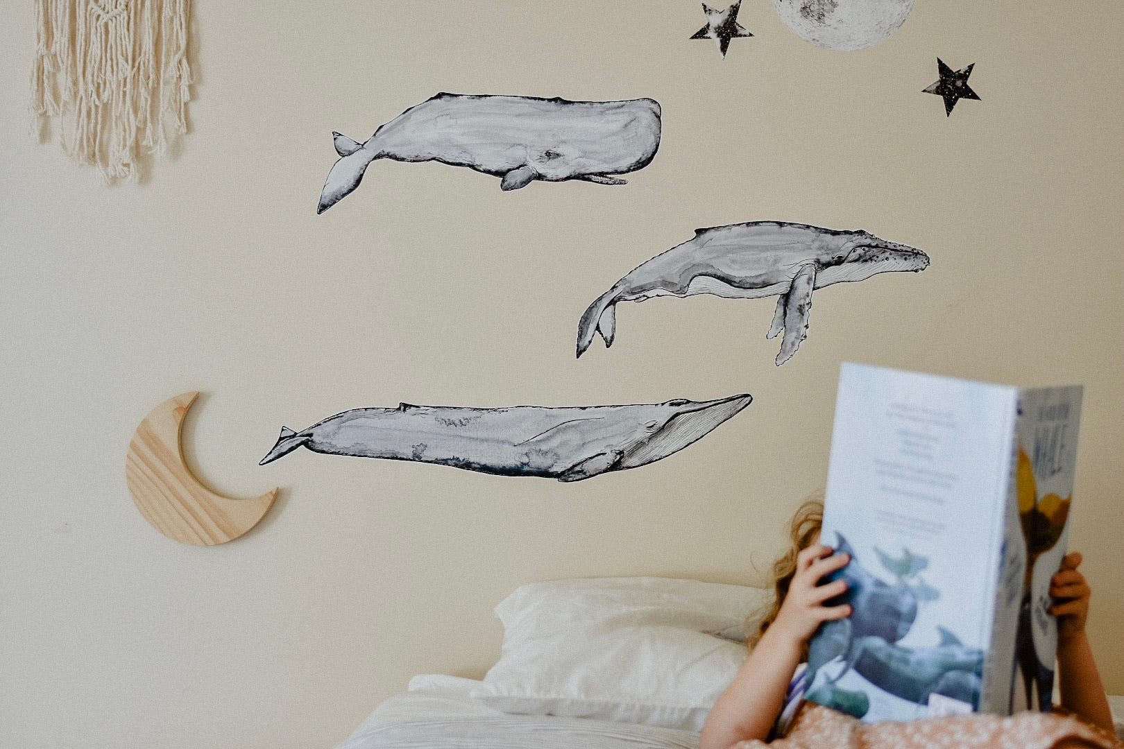 From the Deep Whale Collection - Original & NEW Super Whales - Fabric Wall Decals