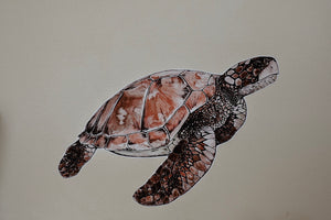 Umi the Green Sea Turtle - Fabric Wall Sticker - Separate