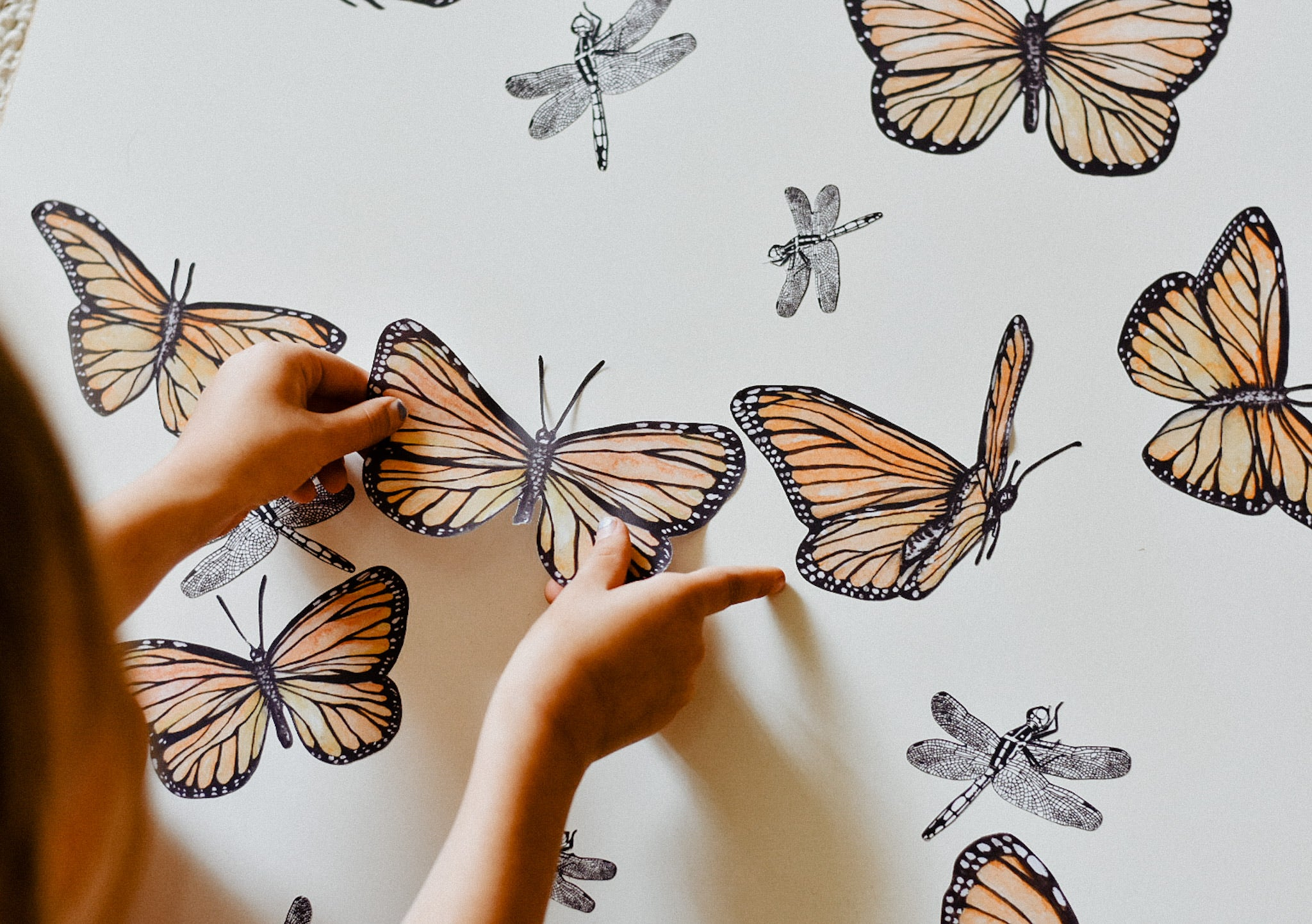 """Follow the Sun"" Butterfly Collection - Fabric Wall Decals"