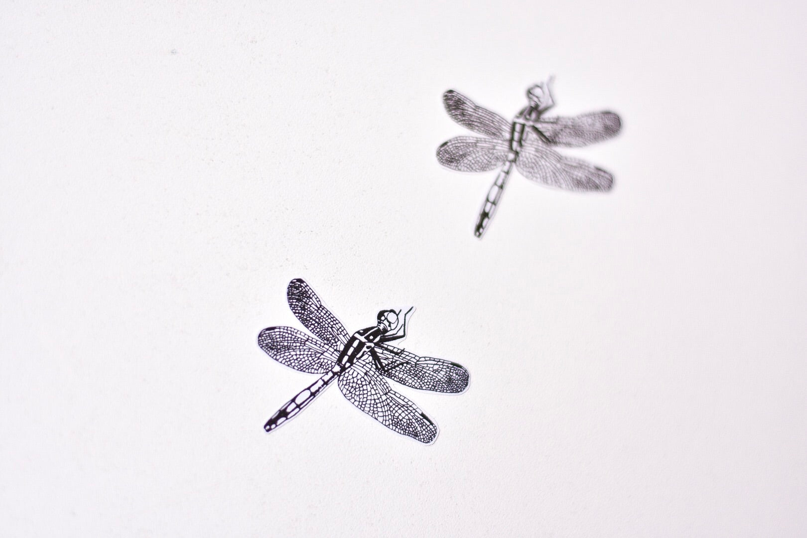 Dragonfly Fabric Wall Decals - Separates