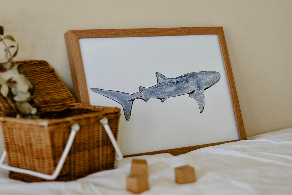 Anouska the Whale Shark Print