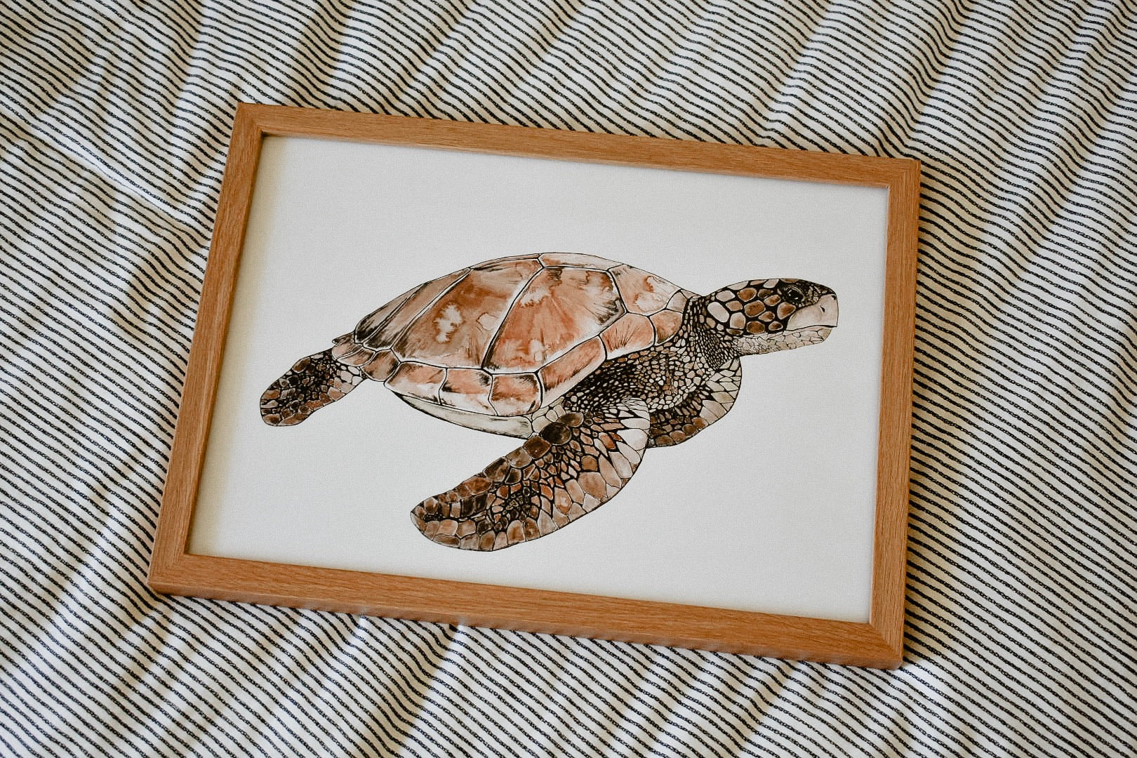 Umi the Green Sea Turtle Print