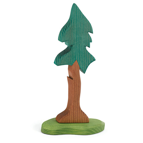 Ostheimer Tree, Spruce tall with Trunk and Support