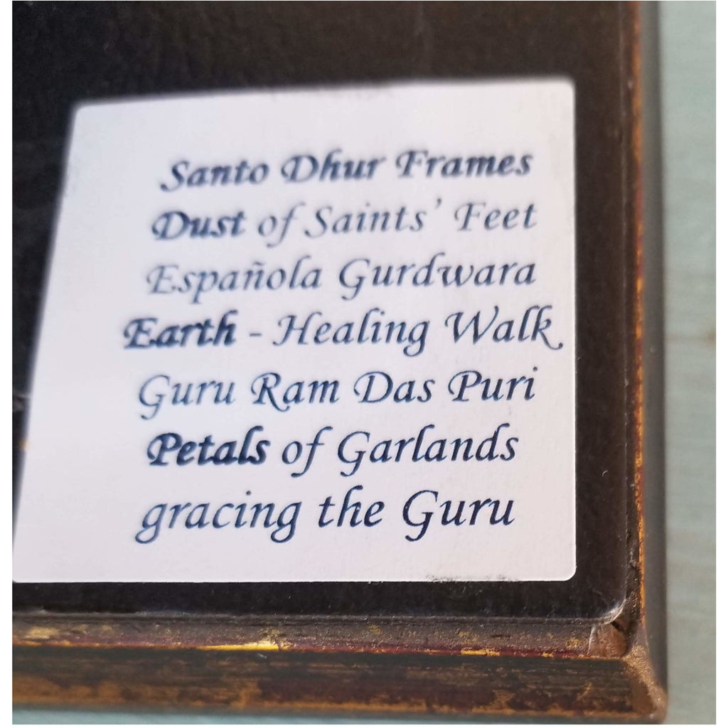 Medium Size Framed Travel Altar Piece Frame- Sage Moon