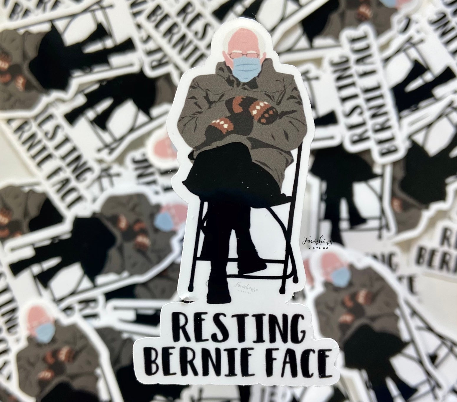 Resting Bernie Face Sticker or Magnet