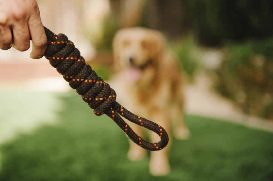 Scout & About Tug Rope Toy
