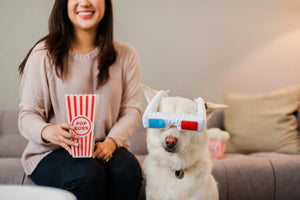 Hollywoof D3-Dog Glasses Dog Toy