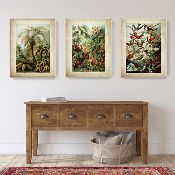 Ernst Haeckel Biology Palm Tree Prints Vintage Hummingbird Botanical Tropical HQ Canvas Print