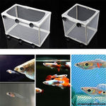 Akvarium Fisk Avl Bokser Double Guppies Baby Gauze Trap Box Isolator Mini Tanker
